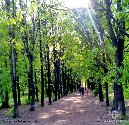 Фотография: Наташенский парк.jpg, пользователя: Астарта