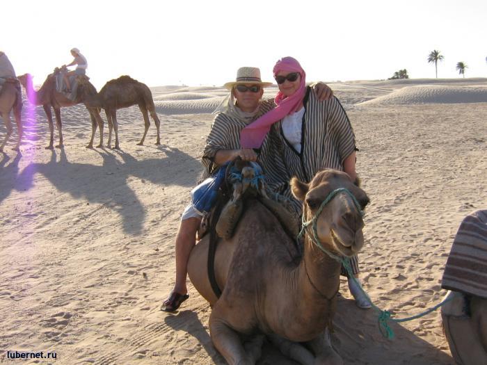 Фотография: Покорители Сахары, пользователя: Авиатор