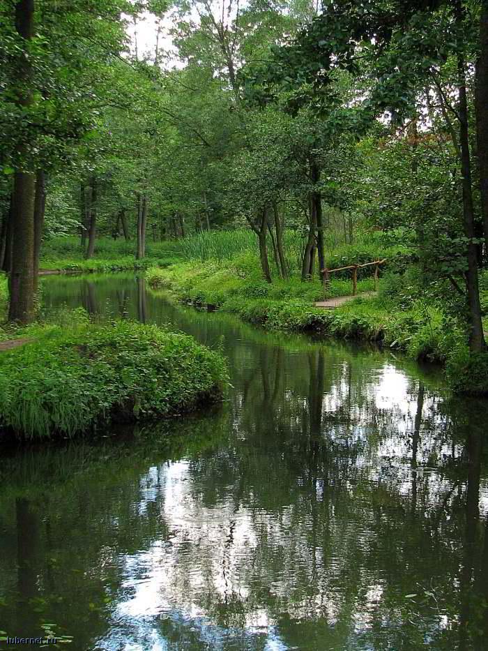 Фотография: Речка у Верхнего пруда, пользователя: RUS_so