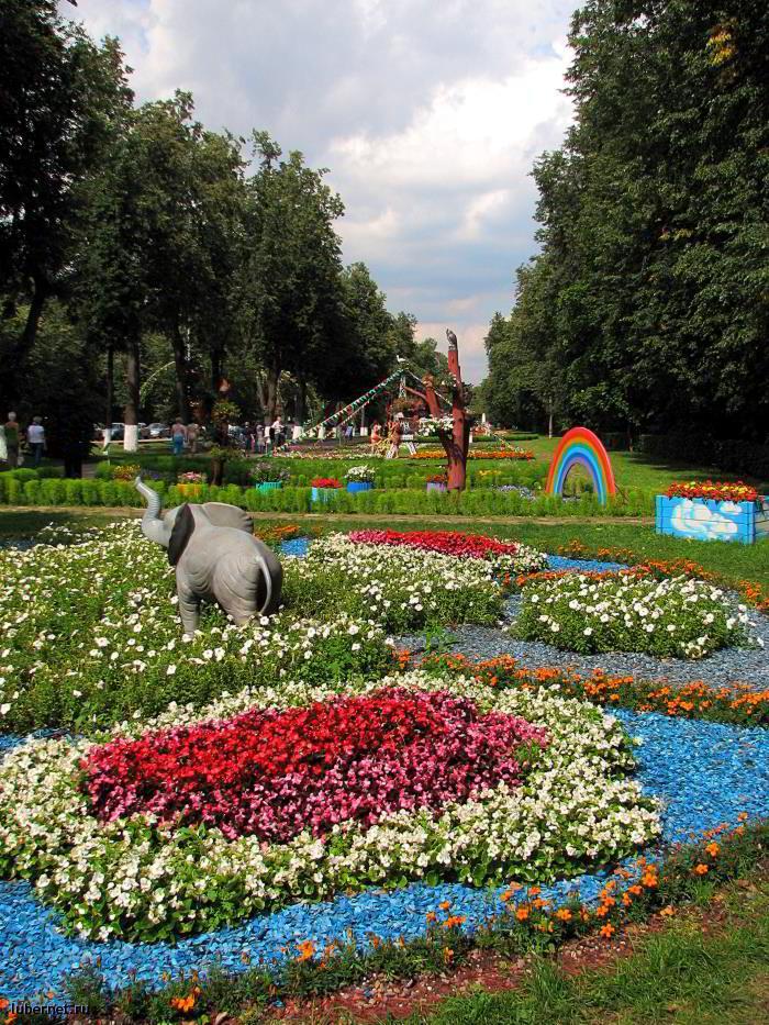 Фотография: Фестиваль цветников, пользователя: RUS_so