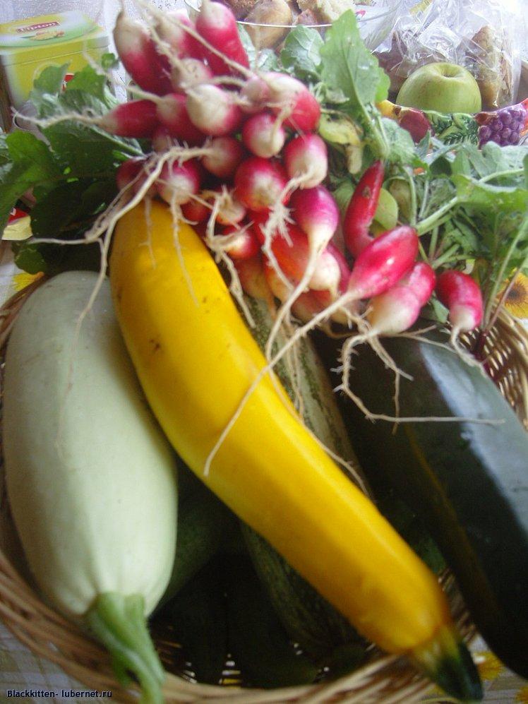 Фотография: урожай.jpg, пользователя: Blackkitten