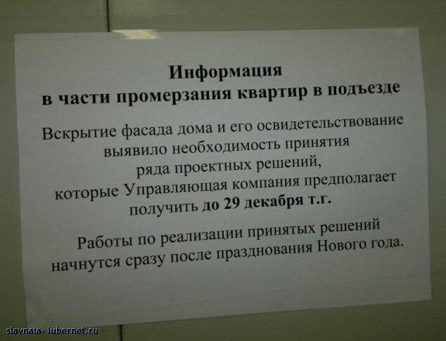 Фотография: 261220121514-1.jpg, пользователя: slavnaia