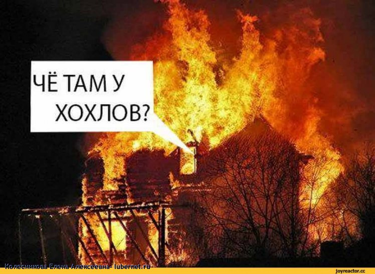 Фотография: политика-песочница-2027790.jpeg, пользователя: Колесникова Елена Алексеевна