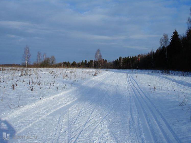 Фотография: лыжню!, пользователя: zvezdochet