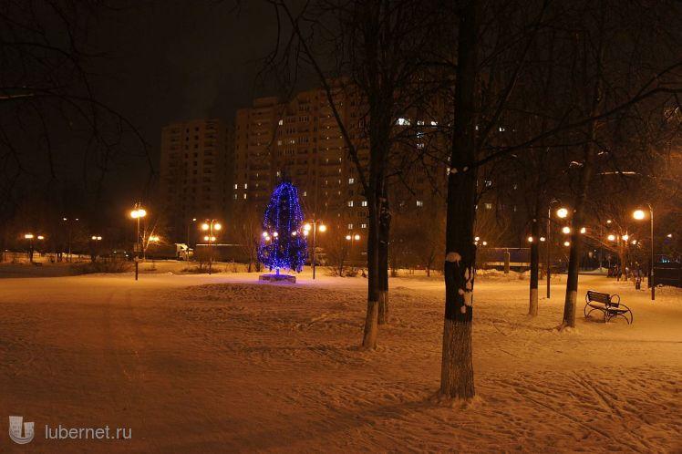 Фотография: Волшебная елка, пользователя: zvezdochet