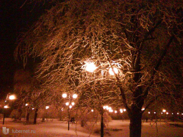 Фотография: Хрустальные деревья, пользователя: zvezdochet