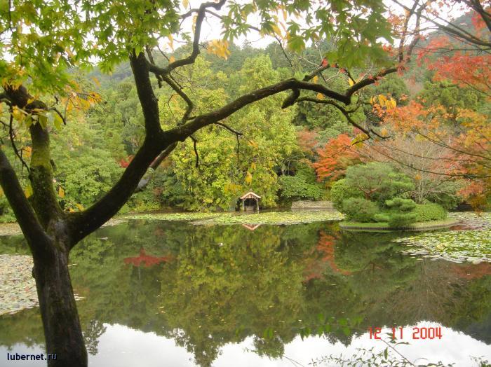 Фотография: Япония 2, пользователя: Alёнka