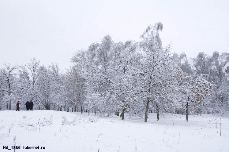 Фотография: наташинский парк, 01.01.11, пользователя: Nd_18