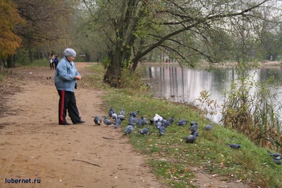 Фотография: Еще один вариант Наташинских прудов 2006 года, пользователя: Nd_18
