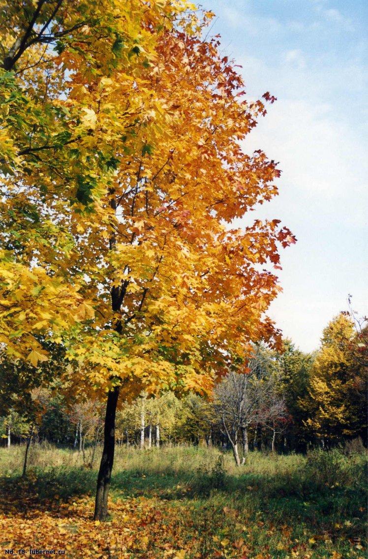 Фотография: Наташ. парк, октябрь 2003 г, пользователя: Nd_18