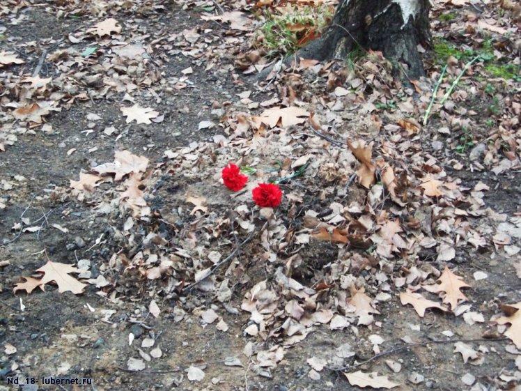 Фотография: могила в Наташинском парке 2.jpg, пользователя: Nd_18
