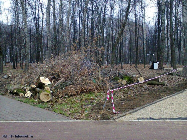 Фотография: Реконструкция Наташинского парка 1.jpg, пользователя: Nd_18