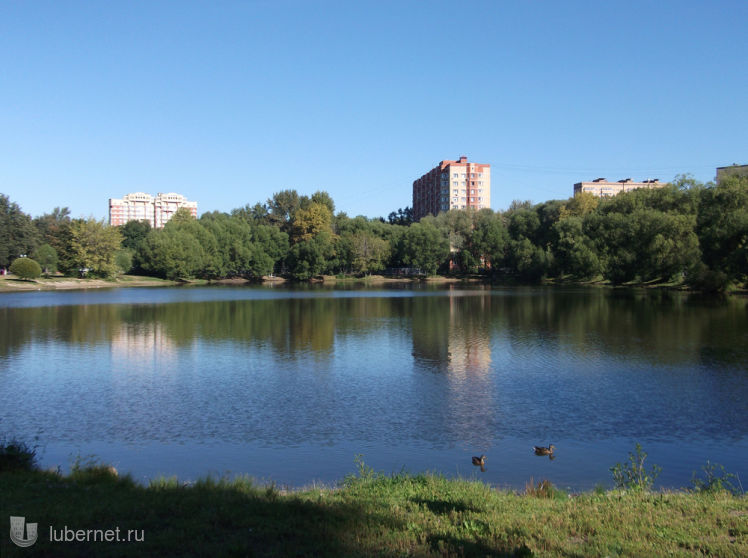 Фотография: Наташинский пруд, пользователя: Nd_18