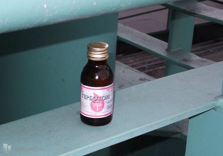 Фотография: срач на лестнице у Эстакады-3, пользователя: Nd_18