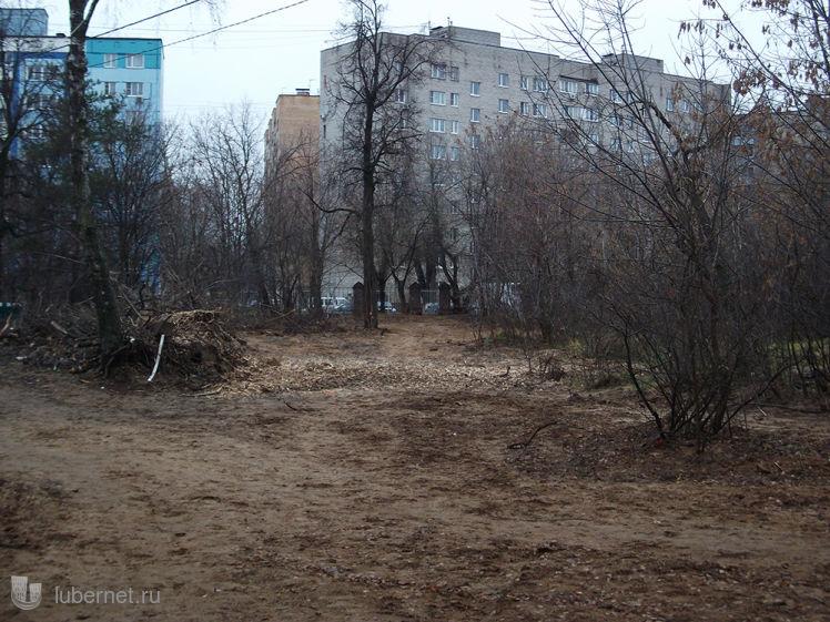 Фотография: Аллея в Наташ. парке, пользователя: Nd_18