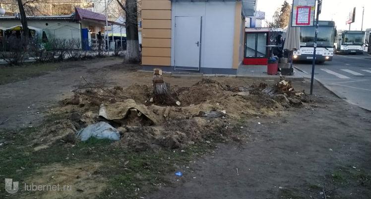 Фотография: Выкорчёвка деревьев, пользователя: Nd_18