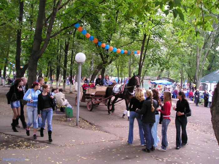 Фотография: Лошади в парке, пользователя: rindex