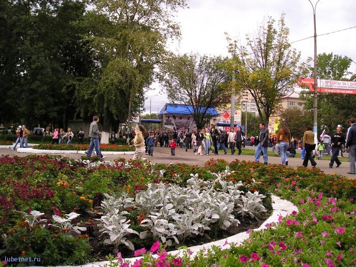 Фотография: Цветы в центре города, пользователя: rindex