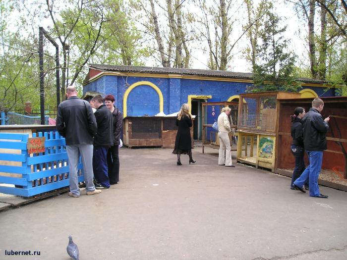 Фотография: Живой уголок в парке!, пользователя: rindex