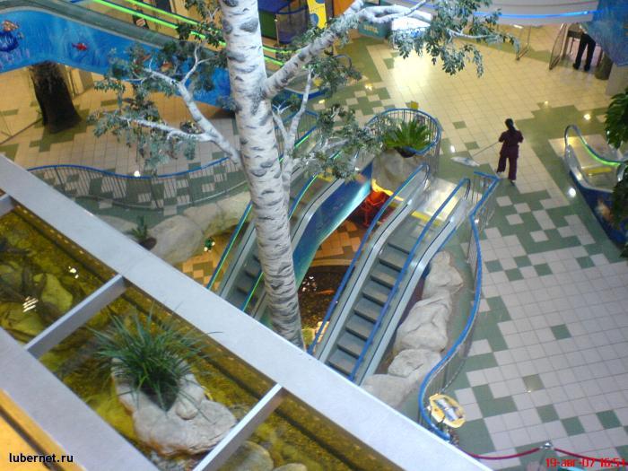Фотография: Вид со второго этажа магазина! В центре дерево!!, пользователя: rindex