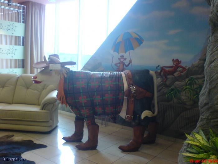 Фотография: Корова с пистолетом, пользователя: rindex