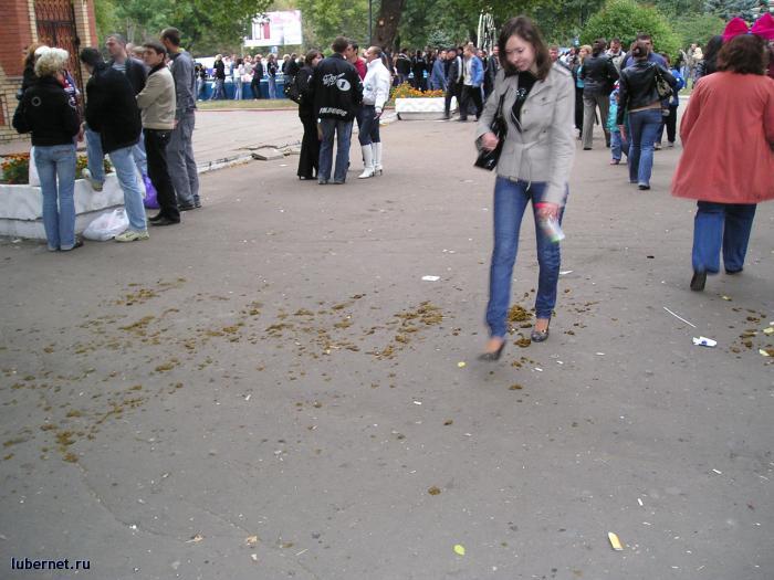 Фотография: Много лепешек прямо в центре города, пользователя: rindex