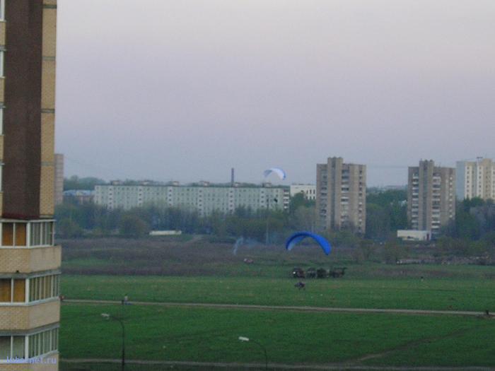 """Фотография: """"Парашютисты"""" на поле2, пользователя: rindex"""