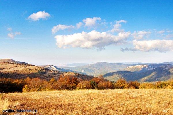 Фотография: 6-3.jpg, пользователя: avol-ka