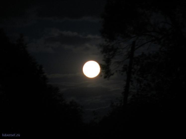 Фотография: Луна, пользователя: Дарья