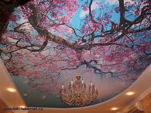 Фотография: Натяжной потолок (фотопечать).jpg, пользователя: epotolok