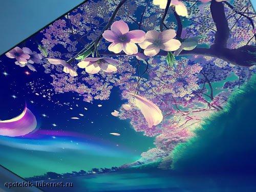 Фотография: Натяжной потолок (фотопечать, Звездное небо) 1.jpg, пользователя: epotolok