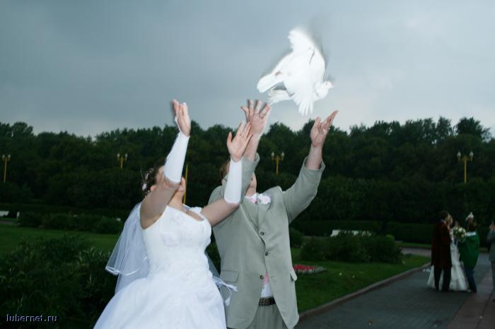 Фотография: свадьба 03.08.2007, пользователя: rasskaz