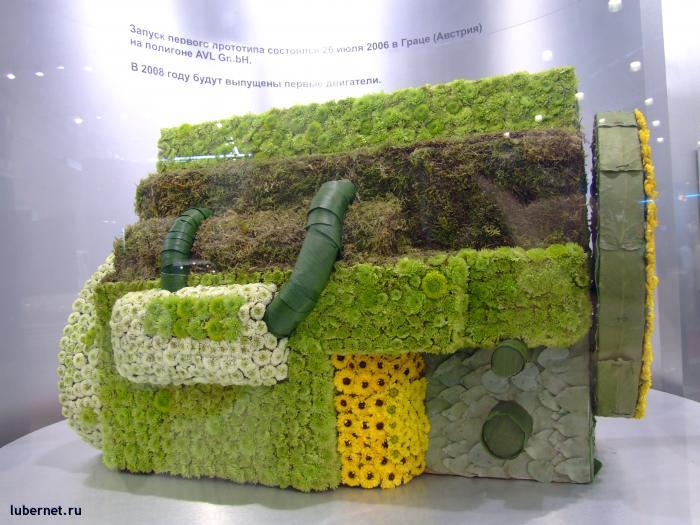 Фотография: Экология превыше всего, пользователя: Gertsog