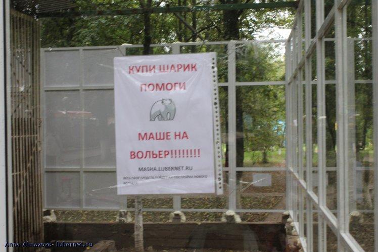 Фотография: IMG_9443.JPG, пользователя: Anna Almazova