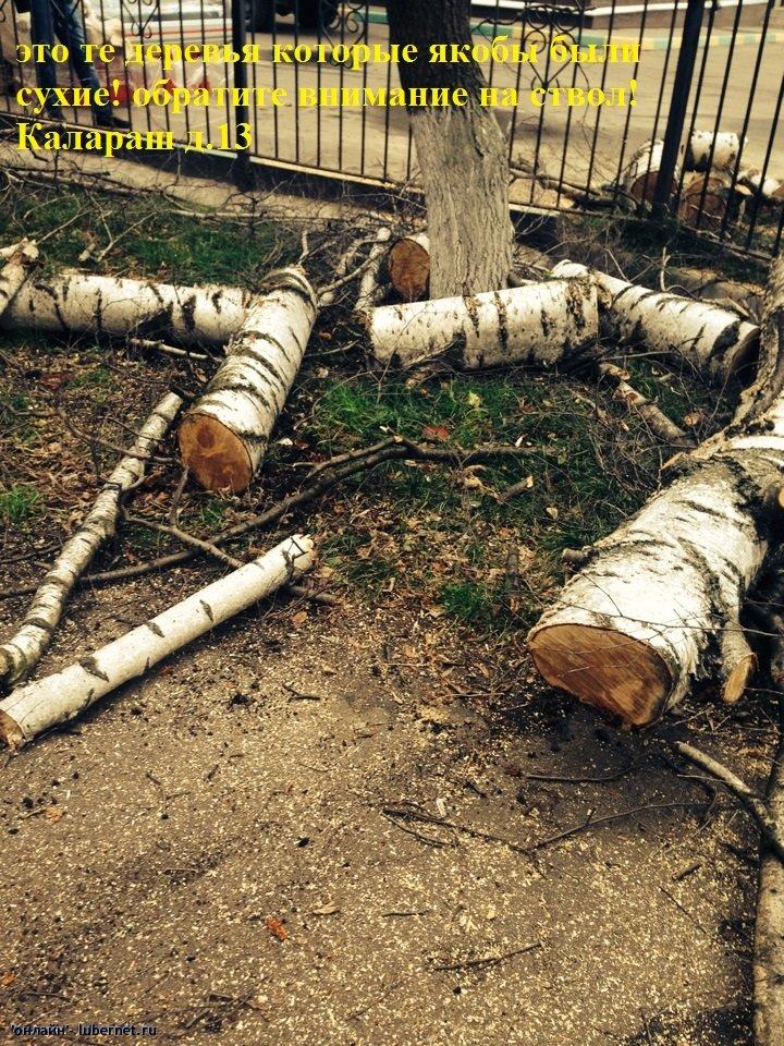 Фотография: image-27-02-14-03-09-7.jpeg, пользователя: онлайн