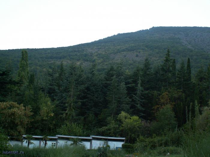 Фотография: Вид из окна, пользователя: lyuber