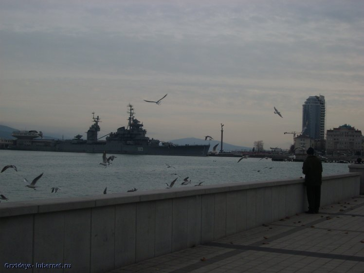 Фотография: SL730151.JPG, пользователя: Orxideya