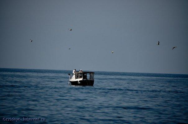 Фотография: На рыбалке.jpg, пользователя: Orxideya