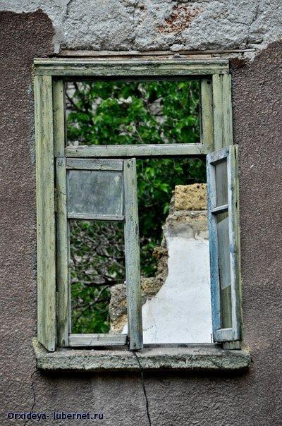 Фотография: Ту у окна ждала меня когда-то.jpg, пользователя: Orxideya
