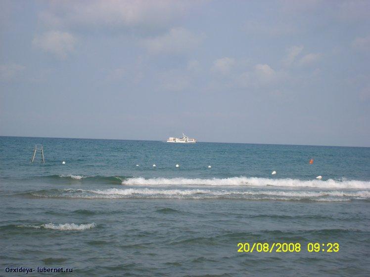 Фотография: SL732954.JPG, пользователя: Orxideya