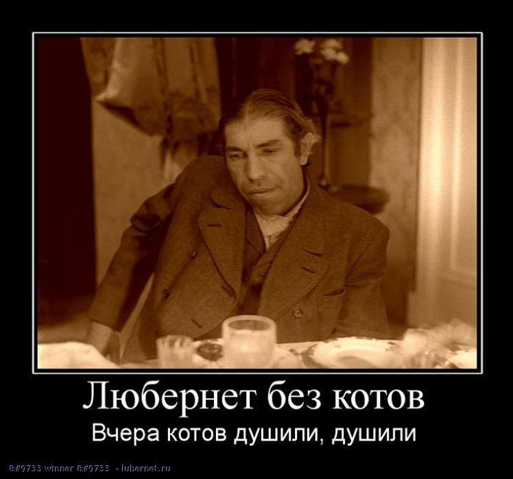 Фотография: Шариков, пользователя:  &#9733 winner &#9733