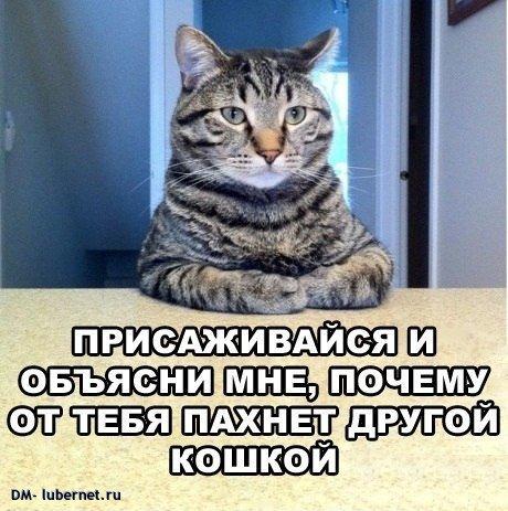 Фотография: x_570d5569.jpg, пользователя: DM