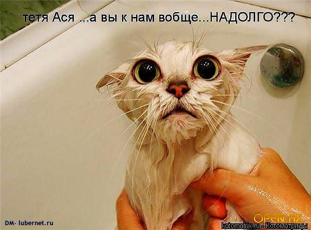 Фотография: Ванная.jpg, пользователя: DM