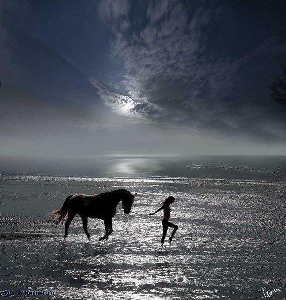 Фотография: Девушка и конь.jpg, пользователя: DM