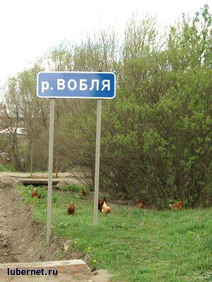 Фотография: речка Вобля, пользователя: DM