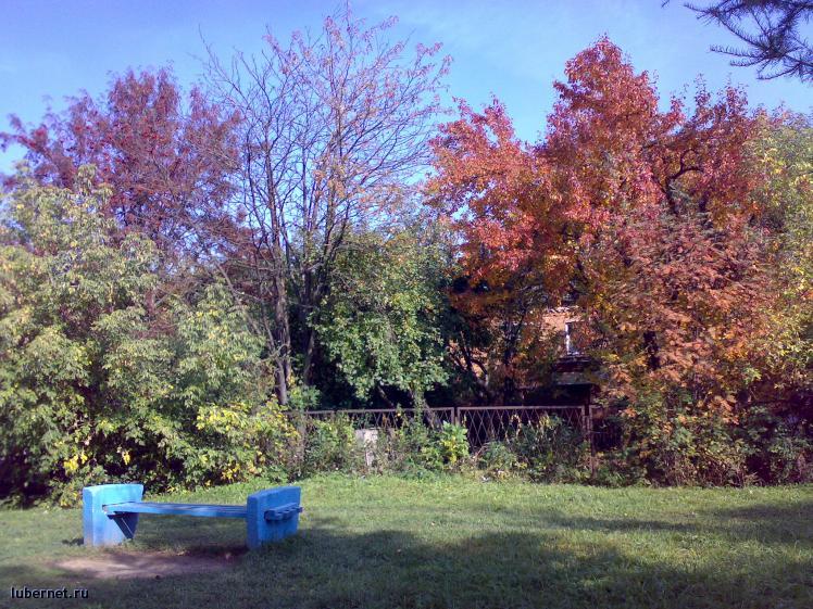 Фотография: Осень, пользователя: paranoja