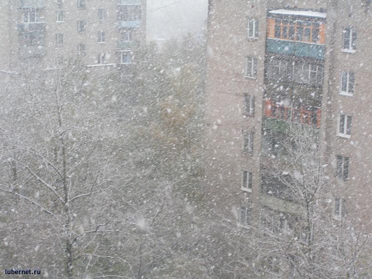 Фотография: Покров, снегопад, пользователя: Малинка