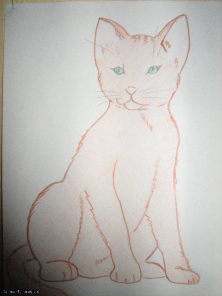 Фотография: котёнок.jpg, пользователя: Кatena