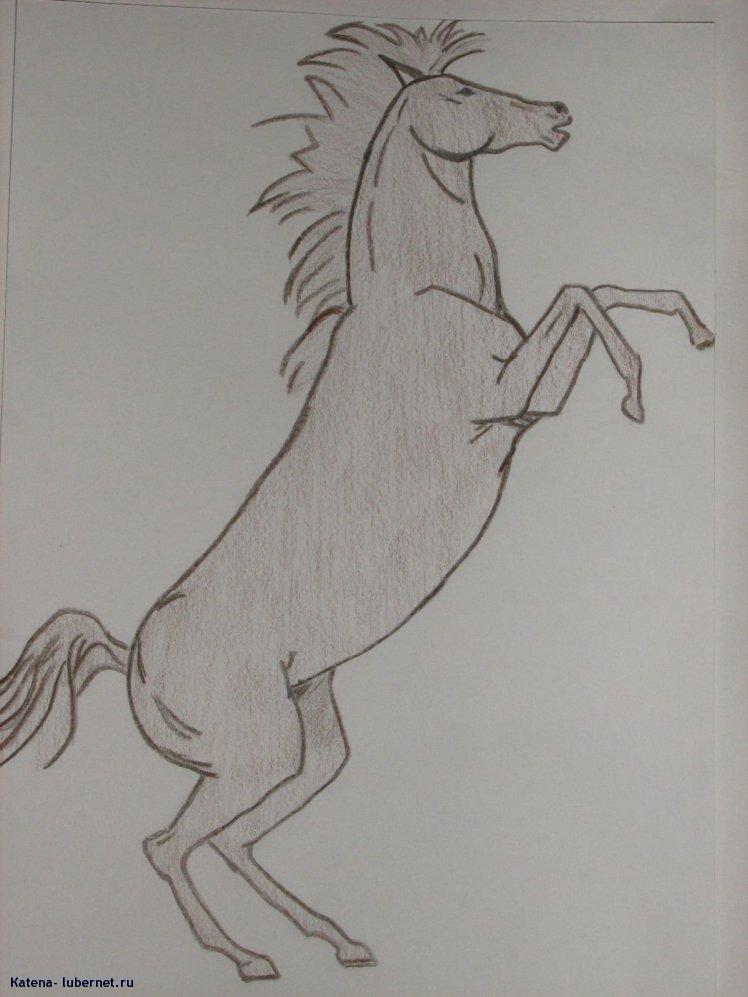 Фотография: конь-огонь.jpg, пользователя: Кatena