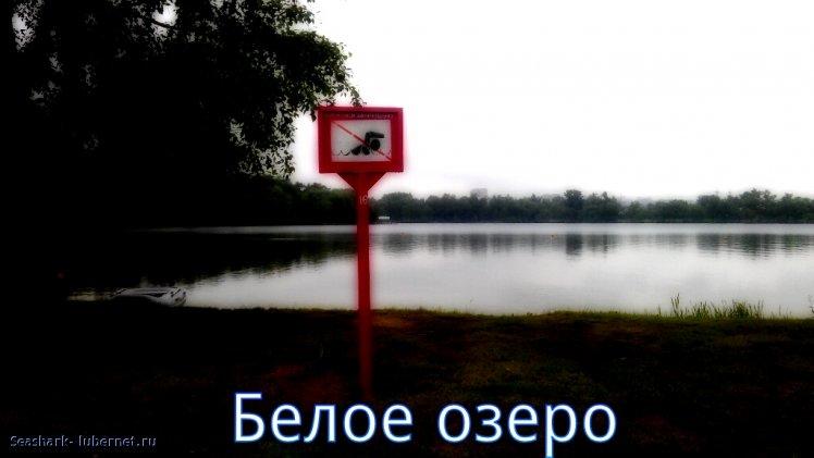 Фотография: белое озеро.jpg, пользователя: Seashark